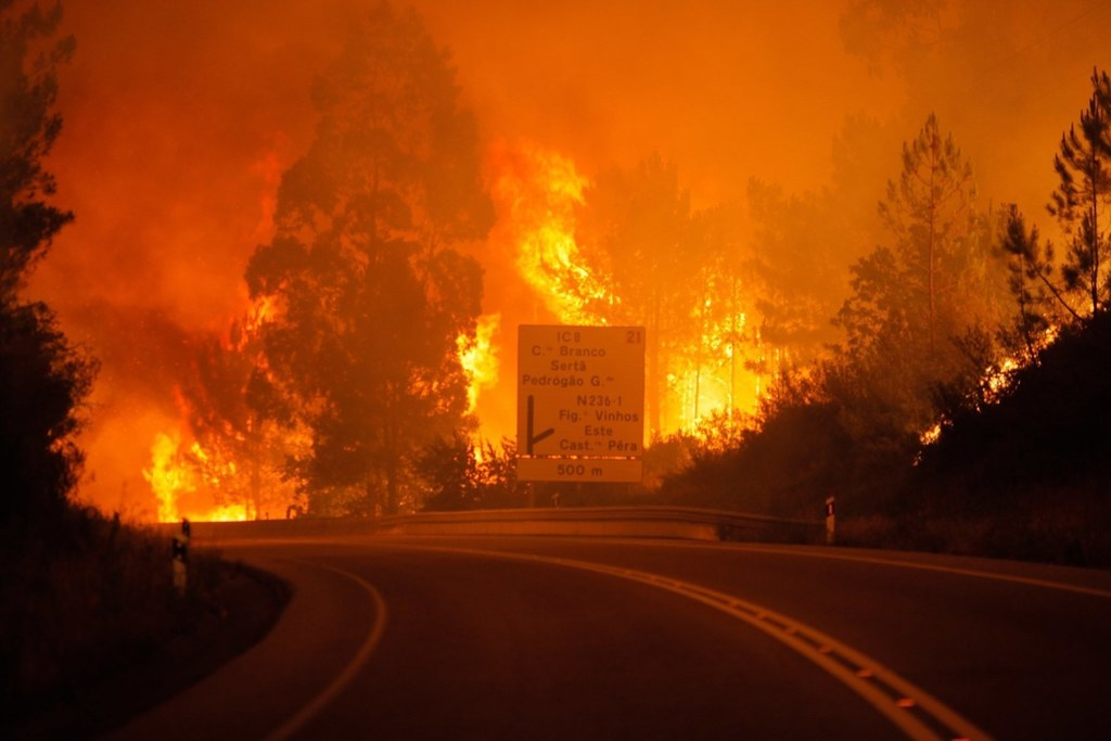 62 killed in Portugal forest fires, many dying in their cars as flames sweep road