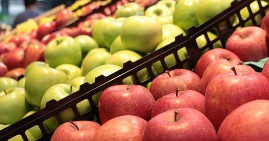 Almost Half Of Portuguese Shoppers Buy Organic | ESM Magazine