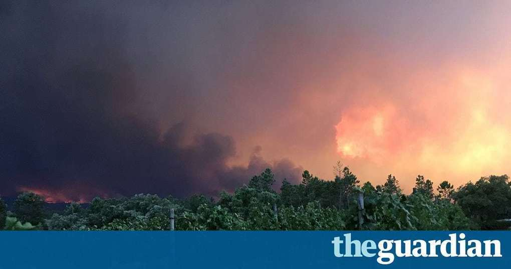 Portugal wildfires – in pictures
