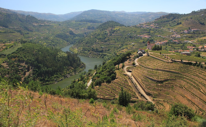 Portugal's 'vinho verde' producers seek EU protection for demarcated regions