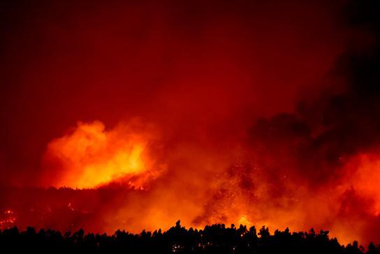 Portugal battles raging forest fires