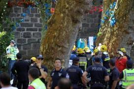 Falling tree kills 11 on Portuguese island of Madeira - BBC News