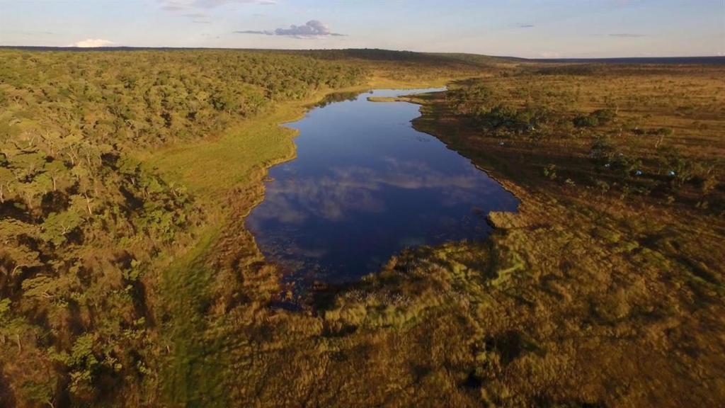 Unexplored African Lakes Reveal Hidden World