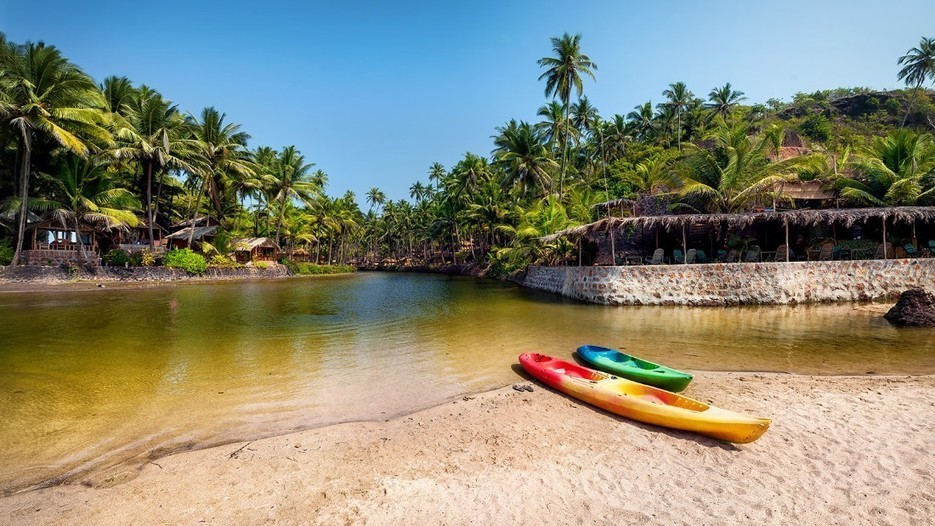 The best things to do in Goa