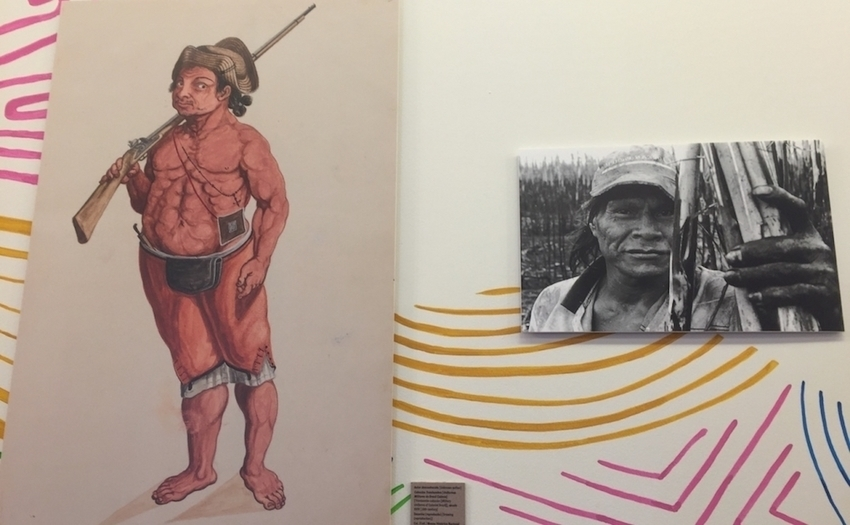 Connecting Brazil's Indigenous Past to Its Activist Present