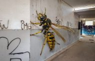 A Street Artist Creates Anomorphic Murals That Look Real