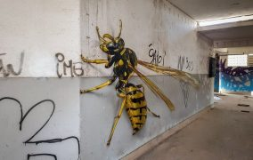 A Street Artist Creates Anomorphic Murals That Look Real