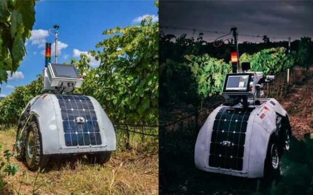 Robot created to monitor key wine vineyard parameters