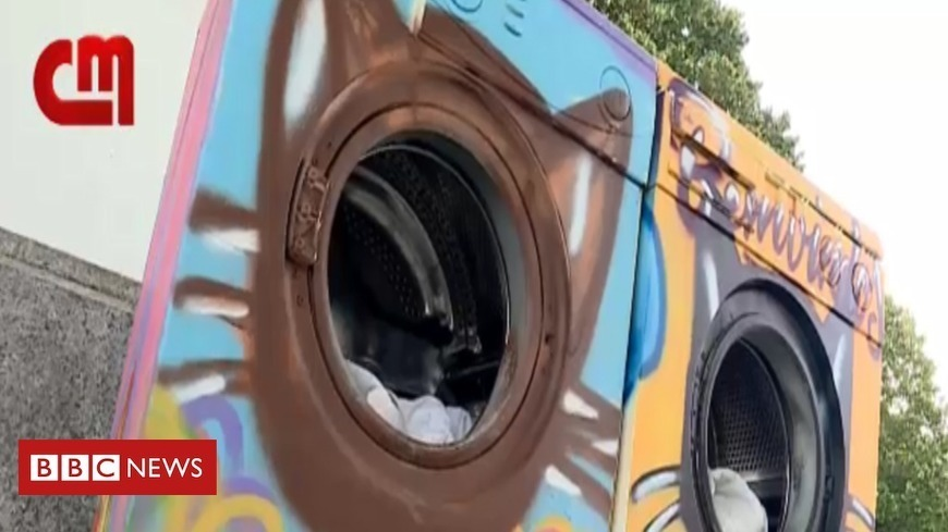 Stray cats housed in washing machines in Portuguese town