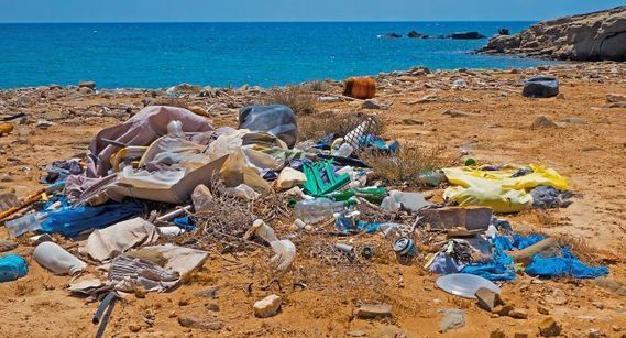 Waste Free Oceans Commences Plastics Remediation Action in the Azores « Markets & Policy « Waste Management World