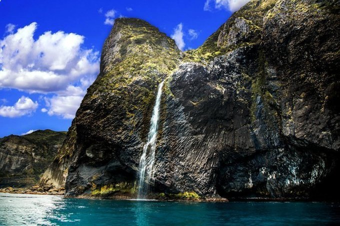 Into the wild - exploring the Flores Island