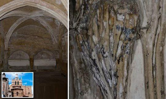 Mysterious never before seen type of black fungus is EATING an 8-century old Portuguese cathedral | Daily
