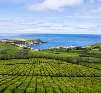 A 4 Night Short Break Holiday To The Azores