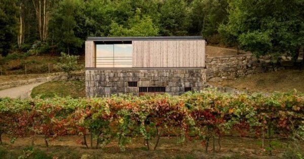 Micro home with green roof sits on granite wine cellar in Portugal