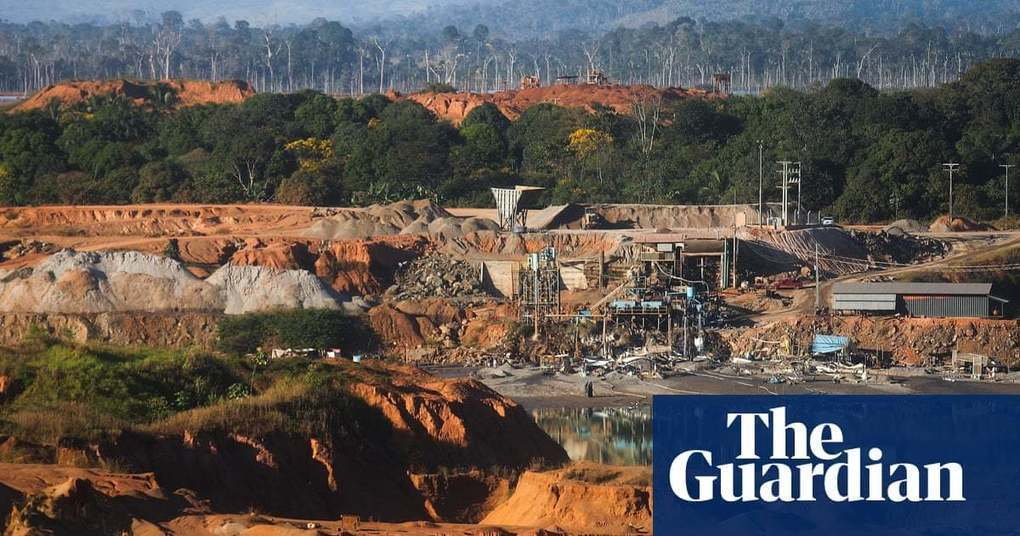 'Death by a thousand cuts': vast expanse of rainforest lost in 2018 | Environment | The Guardian