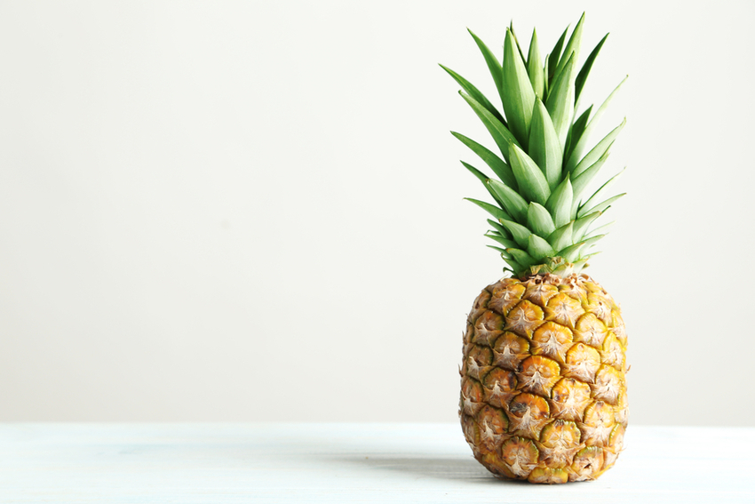 40 Interesting Pineapple Facts - the Luso connection