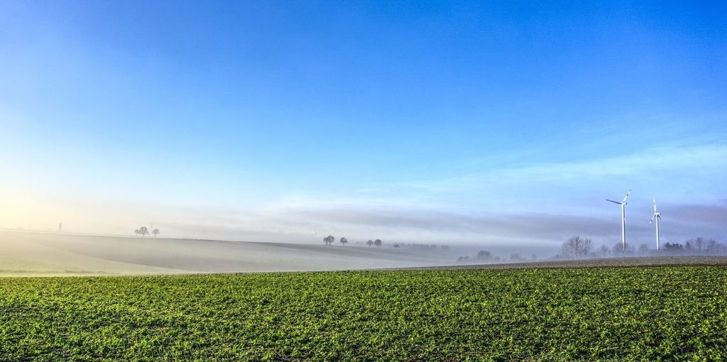 EU CO2 emissions 'significantly decreased' in 2018 - Portugal leads -
