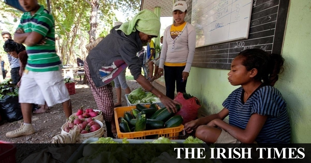 Funding fails to filter down to most needy on farms of Timor-Leste