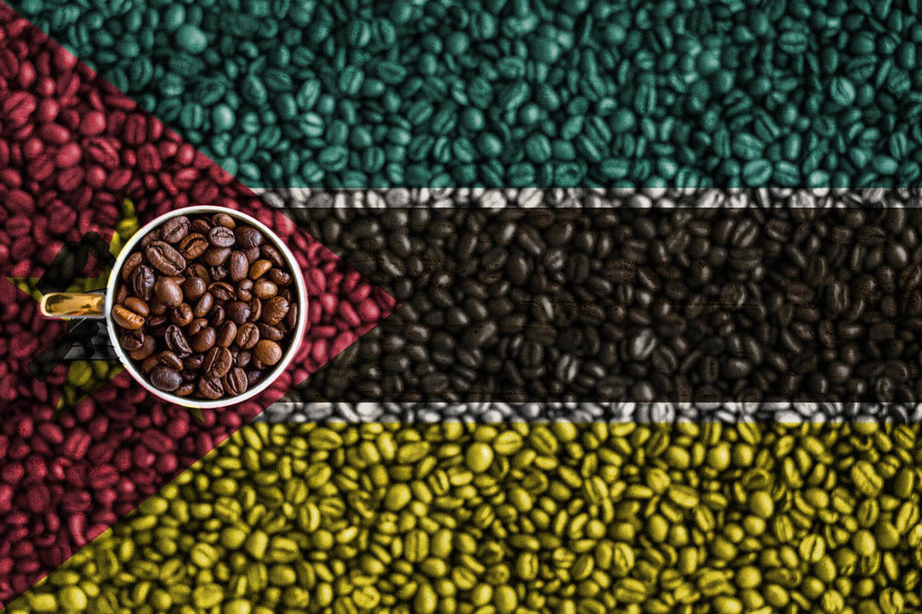 Mozambique: Equipment offered to improve coffee production –