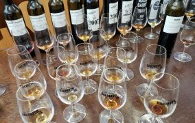 Visiting Madeira for a Taste of Wine and More   TravelSquire -