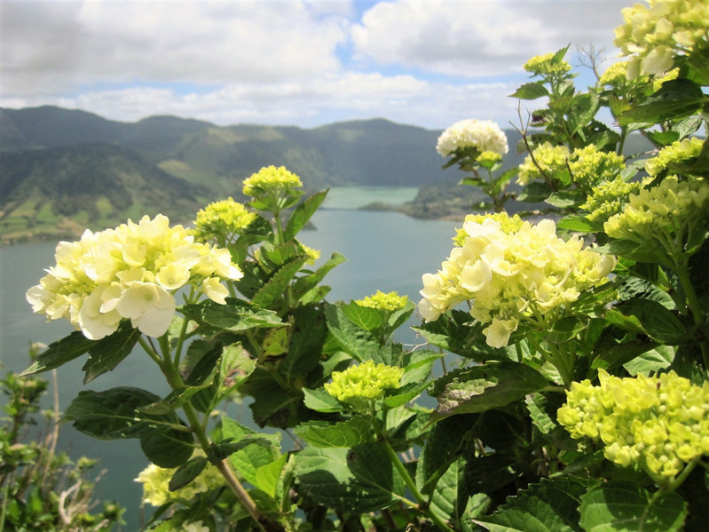 A Call to place : the Azores