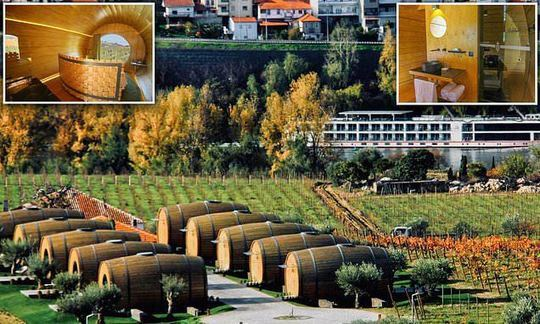 A vine place to lay your head: Sleep inside a giant wine barrel at this vineyard in Portugal | Daily