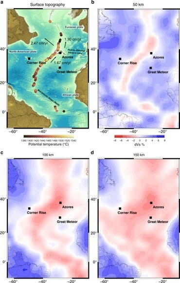Northward drift of the Azores plume in the Earth's mantle
