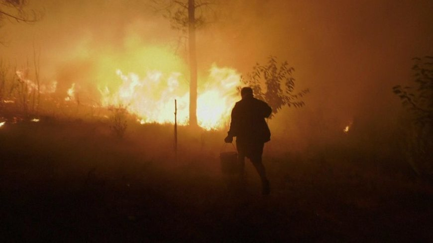 Portugal wildfires: Huge blazes force evacuations