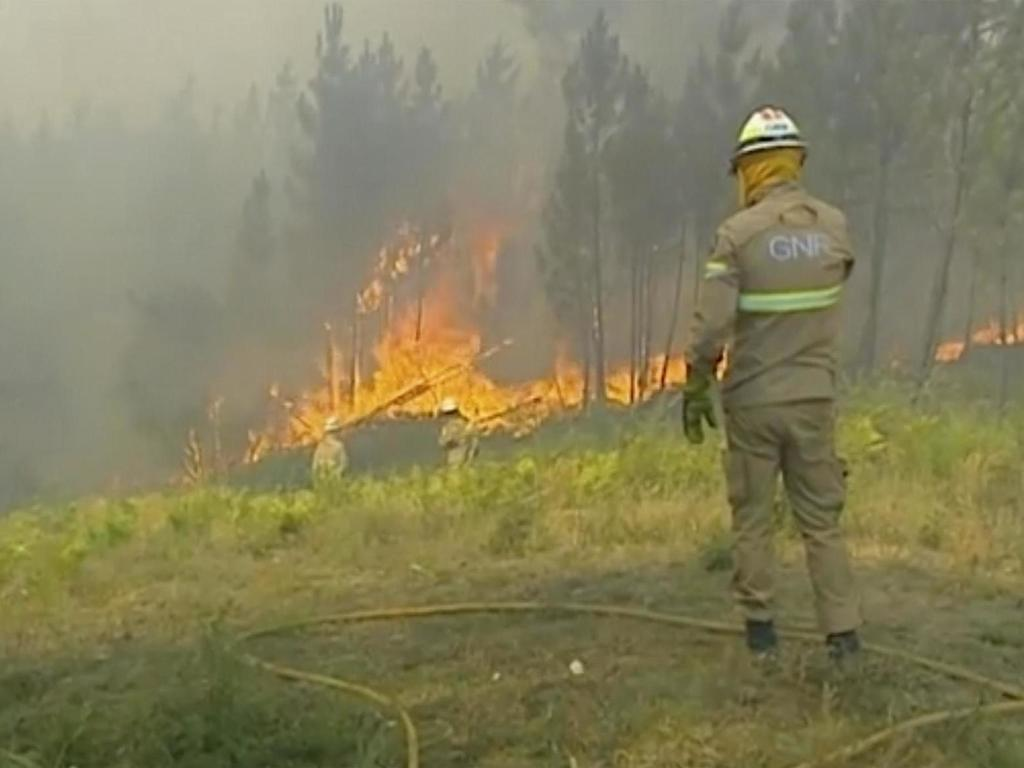 Portugal wildfires: Man arrested in connection with blazes sweeping across central regions