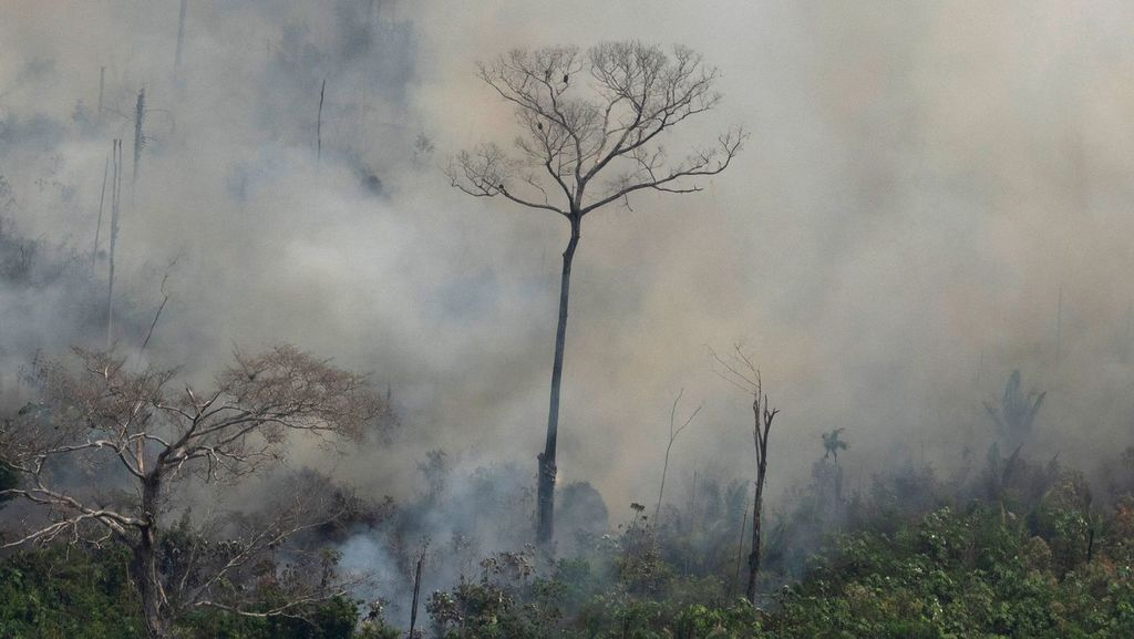 Bolsonaro Sends Army To Fight Amazon Fires Amid Mounting International Pressure -