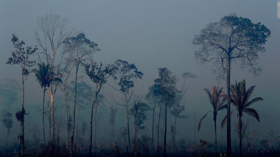Brazil rejected millions in aid for rainforest fires. Hours later, Jair Bolsonaro hinted at a reversal -