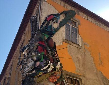 'Half Rabbit' – Vila Nova de Gaia, Portugal