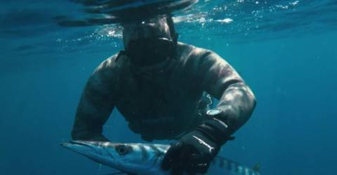 Luso-German athlete dies in spearfishing championship in Denmark -