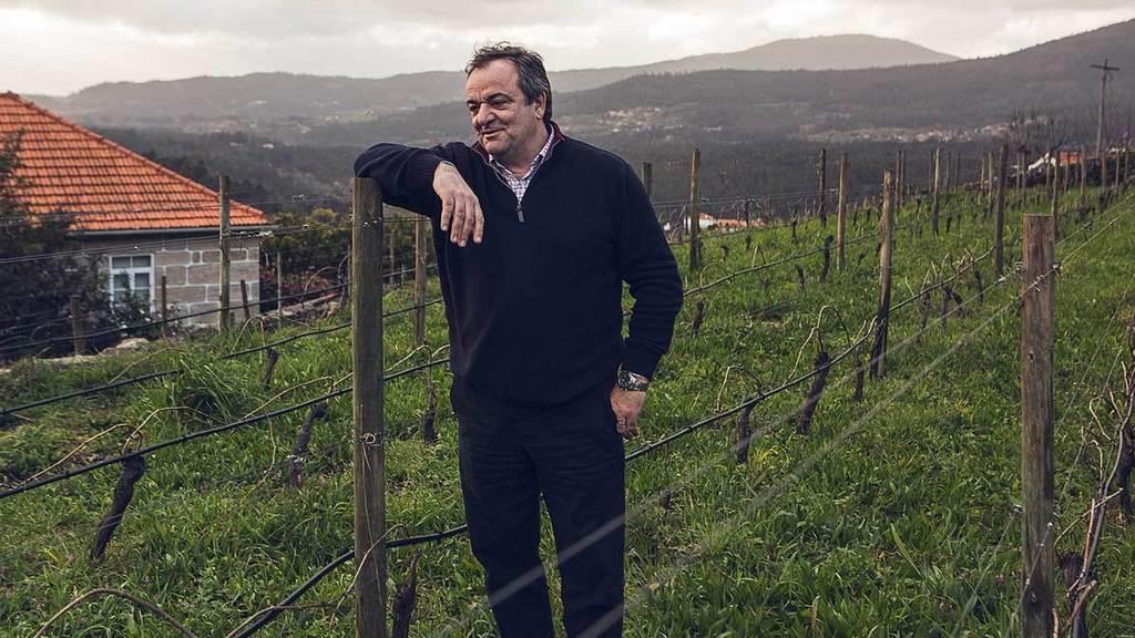 Portuguese Wine Company Esporão Looks to Vinho Verde, Buying Quinta do Ameal -