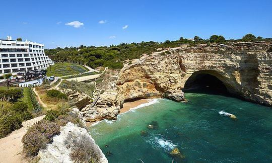 Safari... on the Algarve! Discovering the wildlife on Portugal's south coast  | Daily -