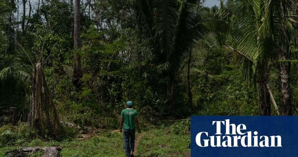 'War for survival': Brazil's Amazon tribes despair as land raids surge under Bolsonaro | World news | The Guardian -