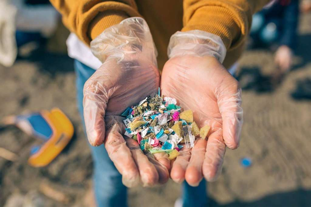 Investigating Plastic in the Azores | Discover Education Blog -