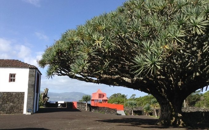 Quiet, solitude and beauty at Pico Island in Azores -