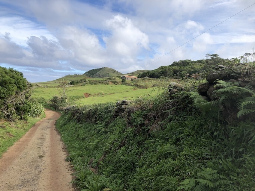 Finding the wild side of the Azores -