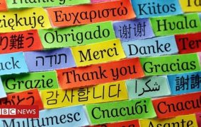Languages affected differently by brain disease -