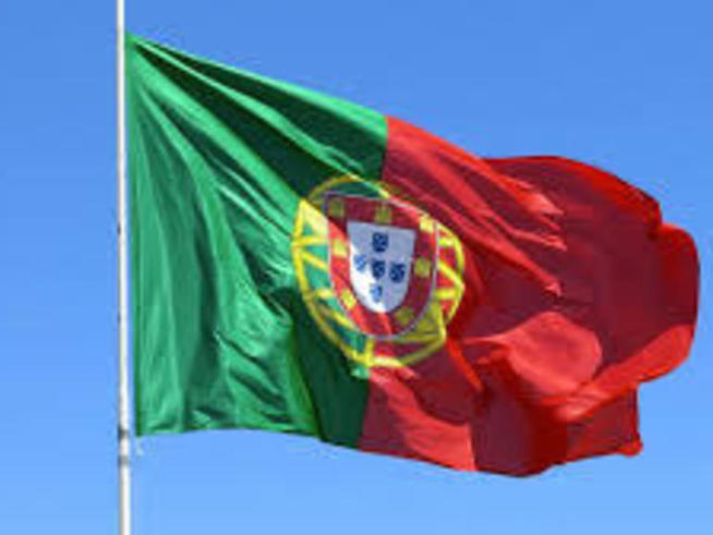 Portuguese tech startups rally to coronavirus cause -