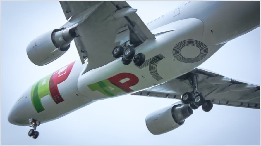 TAP Air Portugal Sets Dates For Schedule Restoration -