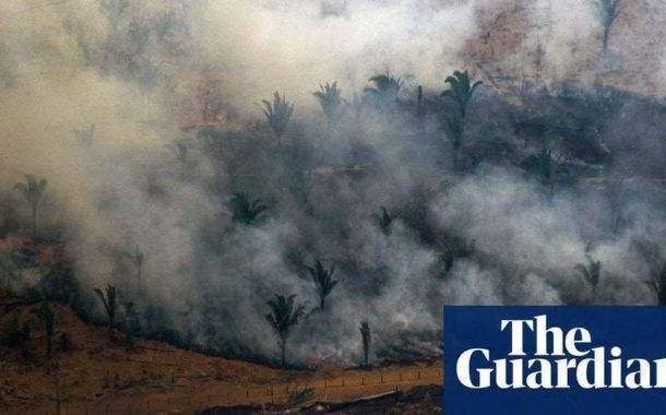 Football pitch-sized area of tropical rainforest lost every six seconds   Environment   The Guardian -