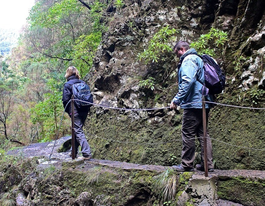 Madeira Island Will Reopen To Tourism On The 1st Of July. | Madeira Happy Tours And Walks -