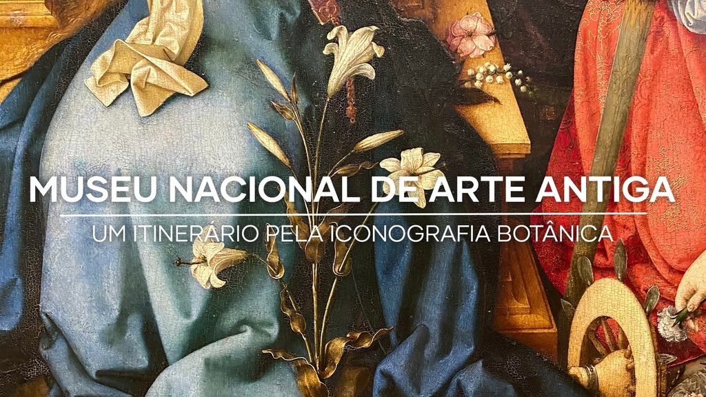 The Museu Nacional de Arte Antiga invites us to look at art in a new light – Lisboa Green Capital 2020 -