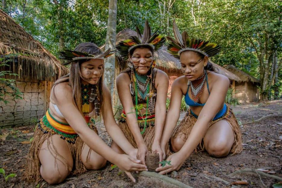Tourist ban leaves Brazil's indigenous lands vulnerable to loggers -