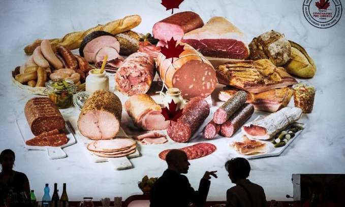 Foods of the future set to green taste buds -