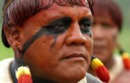 The race to save an Indigenous Brazilian language from extinction  