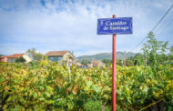 Portuguese Camino Day 10: Homemade Vino de la Casa